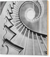 Spiral Staircase Lowndes Grove  Wood Print by Dustin K Ryan