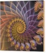 Spiralined Wood Print