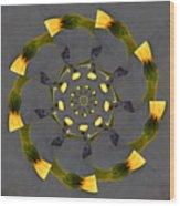 Spiraling Gerberas Wood Print