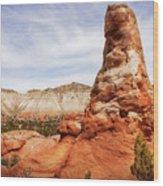 Spire Rocks At Kodachrome Basin State Park Wood Print