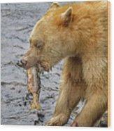 Spirit Bear Take Out  9636 Wood Print