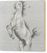 Spirit Horse Wood Print by Robert Martinez