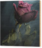 Spirit Of A Dying Rose Wood Print