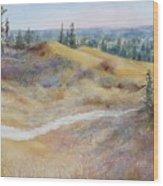 Spirit Sands Wood Print