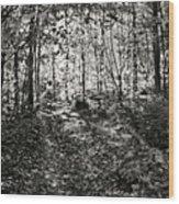 Spirited Away Wood Print