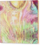 Spirits Of The Sun Wood Print by Linda Sannuti