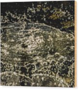 Splash II Wood Print