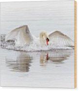 Splash Landing I Wood Print