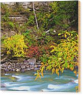 Splash Of Color Along The Creek Wood Print