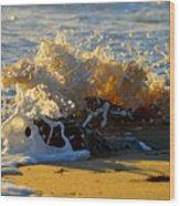 Splash Of Summer - Cape Cod National Seashore Wood Print