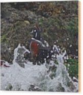 Splashed At Haystack Rock Wood Print
