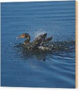 Splashing Cormorant Wood Print
