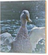 Splashing Duck Wood Print
