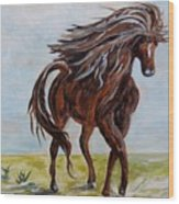 Splashing The Light - A Young Horse Wood Print