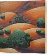 Splendid Uphill Wood Print