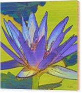 Splendid Water Lily Wood Print