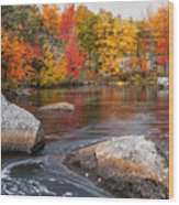 Splendor Of Fall Wood Print