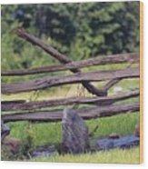 Split Rail Wood Print