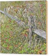 Split Rail Fence And Poison Ivy Wood Print