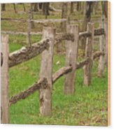 Split Rail Fence Wood Print