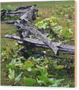 Split Rail Wood Print