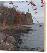 Split Rock Berries Wood Print