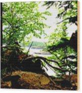 Split Rock State Park Wood Print