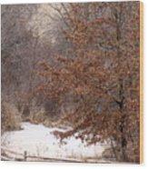 Splitrail Winter Wood Print