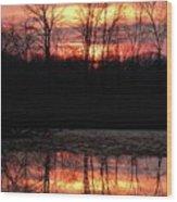 Spo257b Wood Print