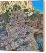Sponge Boulder Wood Print
