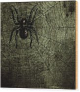 Spooky Spider Wood Print