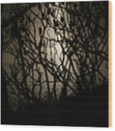 Spooky Sumac Wood Print