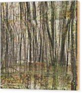Spooky Woods Wood Print