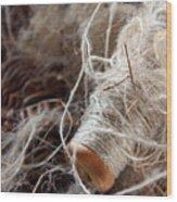 Spool Of Wool Wood Print