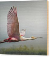 Spoonbill In Foggy Bayou Wood Print