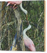 Spoonbill Kiss Wood Print