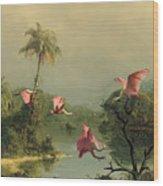 Spoonbills In The Mist Wood Print