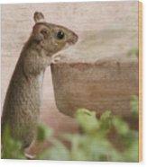 Sports Mouse Wood Print