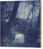 Sportsplex Trail Bridge Wood Print