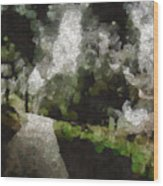 Spot Light On A Fight On A Lone Path Wood Print