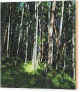 Spot On Wood Print
