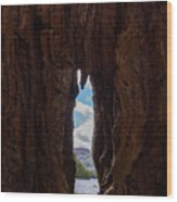 Spot The Lake Shore View Through The Hollow Tree Trunk Wood Print