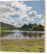 Spot The Swimming Dog In Derwnt Water Lake Wood Print