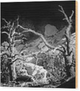 Spotlight On The Rim Wood Print
