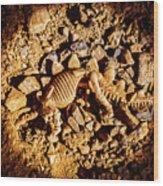 Spotlight On A Extinct Stegosaurus Wood Print