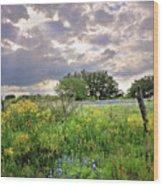 Spotlight On Spring Wood Print