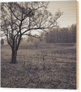 Spotsylvania Battlefield Wood Print