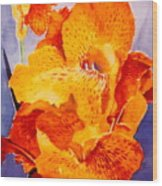 Spotted Canna Wood Print by M Diane Bonaparte