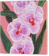 Spotted Orchid Against A Pink Wall Wood Print