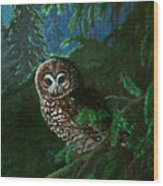 Spotted Owl In Ancient Forest Wood Print